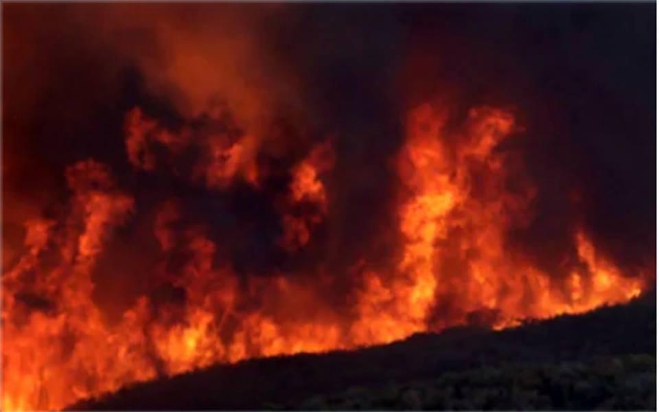 क्यालिफोर्निया भीषण डढेलो, हजार घर नष्ट